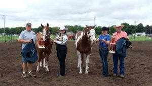Tenth annual horse show a success in Brodhead