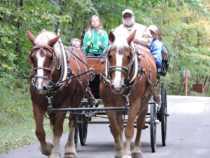Friends of Carver-Roehl Park Hosted Fall Festival Fundraiser