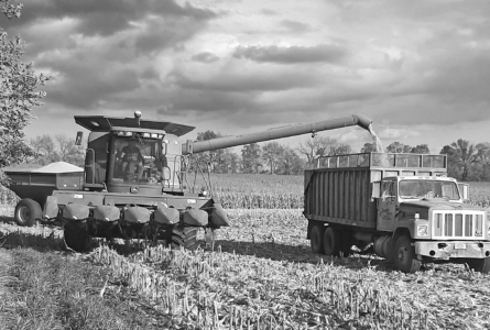 MARY HOOKHAM PHOTO The Independent-Register Mike Wenger of Brodhead unloads the hopper of his combine into a waiting grain truck late last week on County Road OK south of Highway 11.